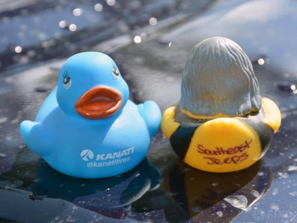 advertising ducks